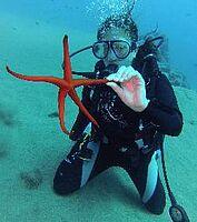 _tauchkurs_lanzarote_open-water-diver.jpg